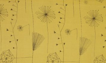 lucienneday